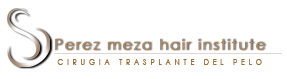 Perez meza hair institute